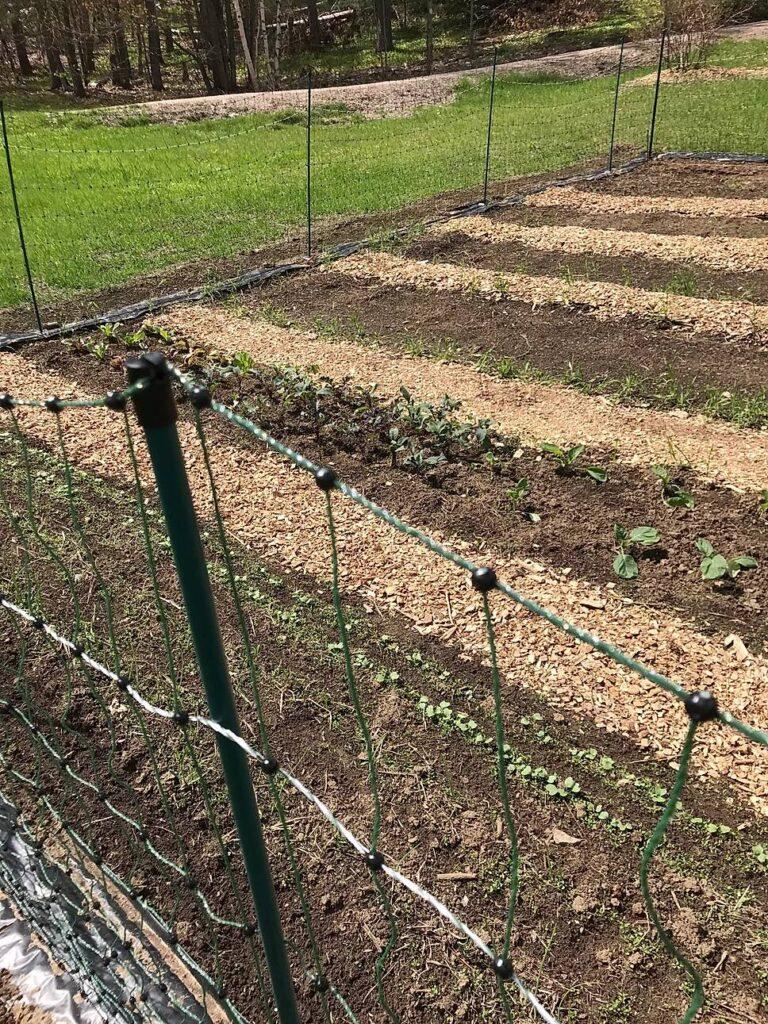A Giving Garden